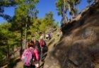 Tolle Fastenwanderung bei Traumwetter auf La Palma