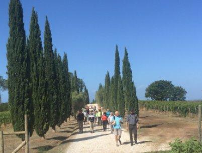 Fastenwandern Fasten Toskana Wandern