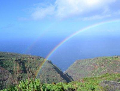 Drachenbaum Tour La Palma