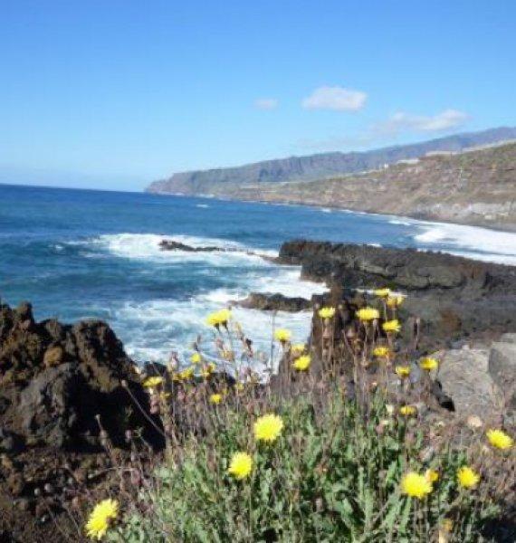 Wanderung an der Küste entlang auf La Palma
