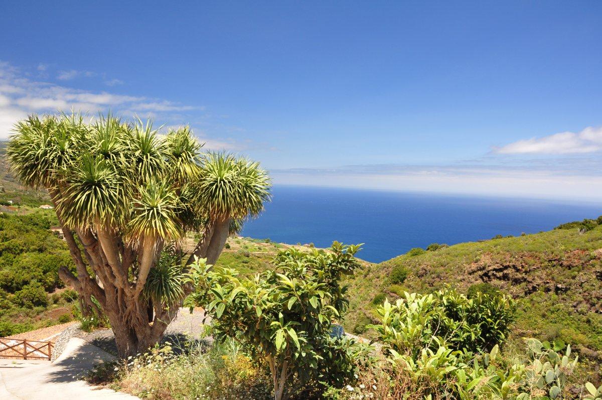 Toller Ausblick beim Fastenwandern auf La Palma