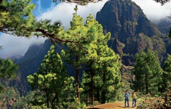 Schritt für Schritt in das Fastenglück, Fasten auf La Palma
