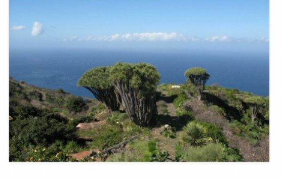 """Fastenwandern auf La Palma - Die Abnehm-Tour"""