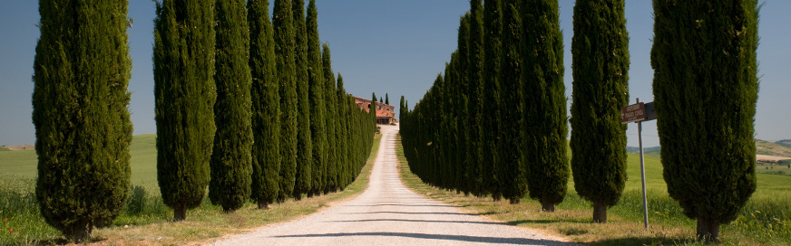 Anmeldung Fastenwandern in der Toskana